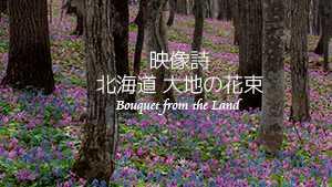 映像詩・北海道大地の花束